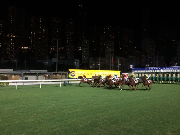 Paardenrace Happy Valley Hongkong